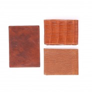 Wallets & Credit Card Holders