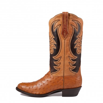 MARCH BOOT OF THE MONTH !