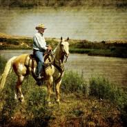 Cowboy Passion